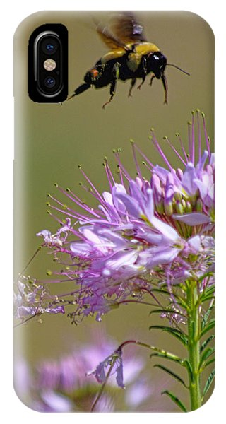 Buzzing Around IPhone Case
