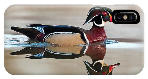 Wood Ducks iPhone Case - By Design by Rob Blair