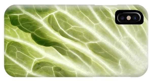 Cabbage Leaf Veins Phone Case by Uk Crown Copyright Courtesy Of Fera/science Photo Library