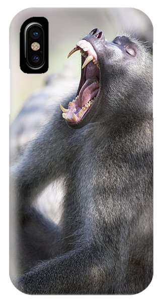 Cackma Baboon Yawning Phone Case by Sean McSweeney