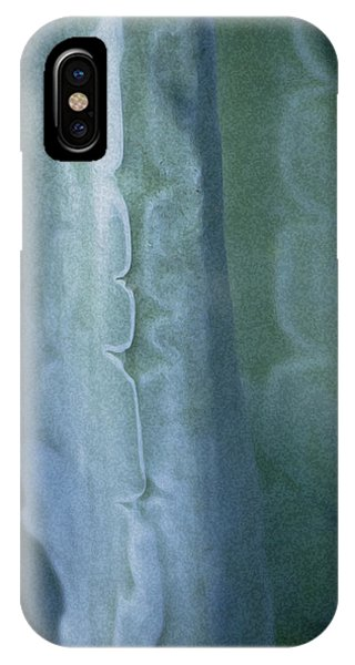 IPhone Case featuring the photograph Cactus 2 by Sherri Meyer