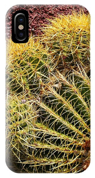 Cactus 9 IPhone Case
