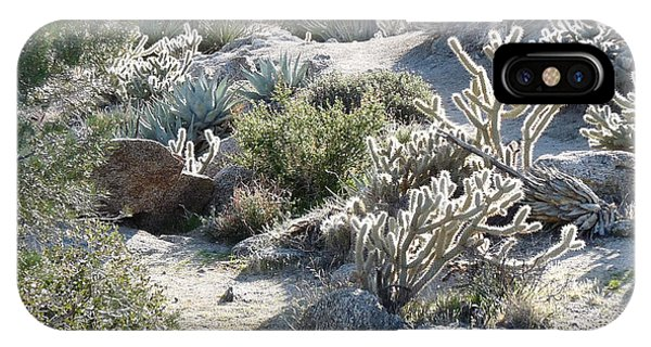 Cactus And Rocks Phone Case by Deborah Smolinske