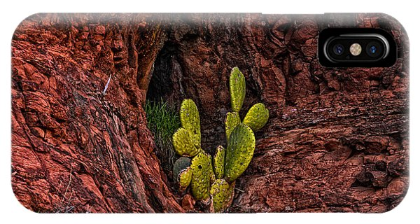 IPhone Case featuring the photograph Cactus Dwelling by Mark Myhaver