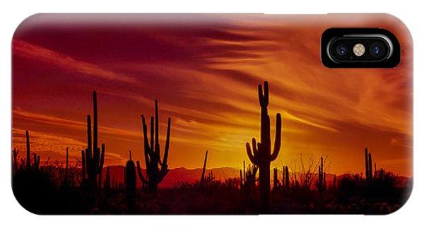 Cactus Glow IPhone Case