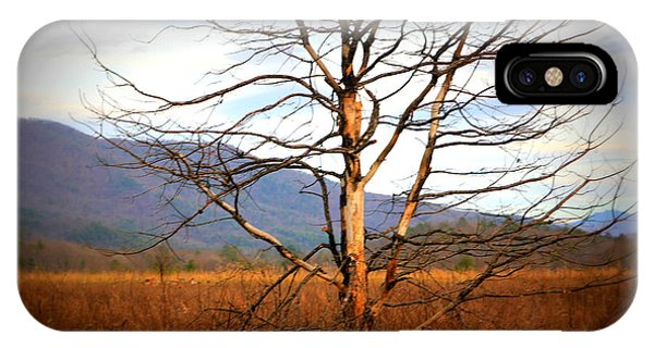 Cades Cove Pasture IPhone Case