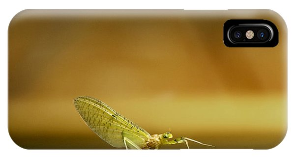 Cahill Mayfly IPhone Case