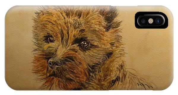 Watercolor Pet Portraits iPhone Case - Cairn Terrier Dog by Juan  Bosco
