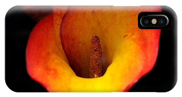 Cala Lily IPhone Case