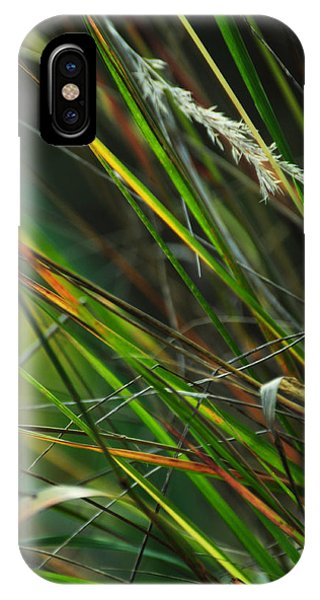 Calamagrostis Lines IPhone Case