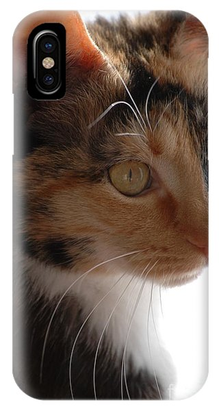 IPhone Case featuring the photograph Cali by Christiane Hellner-OBrien