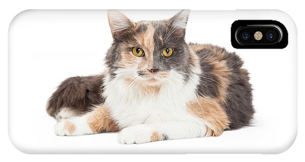 Calico Domestic Longhair Cat Laying IPhone Case
