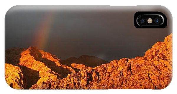 Calico Rainbow IPhone Case