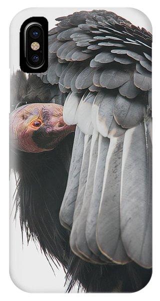 Condor iPhone Case - California Condor by Angie Vogel