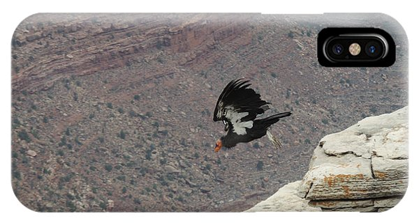California Condor Taking Flight IPhone Case