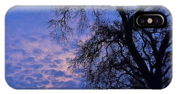 California Oak Sunrise IPhone Case