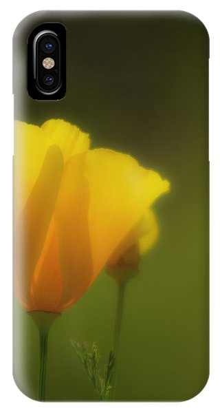 IPhone Case featuring the photograph California Poppies 2 by Sherri Meyer