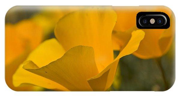 California Poppies IPhone Case