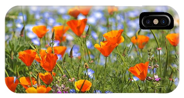 California Poppy Field IPhone Case