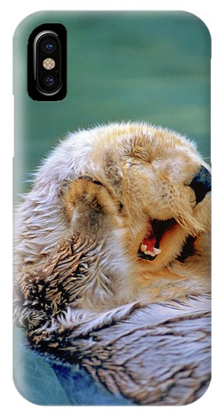 iPhone Case - California Sea Otter Floating Face Up by Stuart Westmorland
