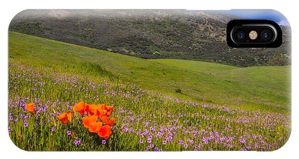 California Wildflowers IPhone Case