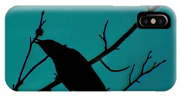 Call Of The Crow On Aqua 2 IPhone Case