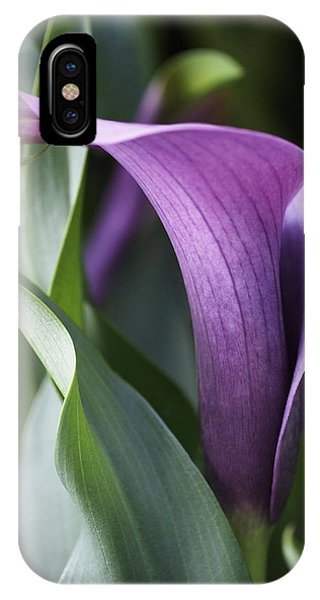 Lily iPhone Case - Calla Lily In Purple Ombre by Rona Black