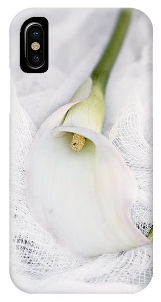 Calla Lily On White Background IPhone Case