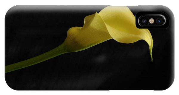 Calla Lily Yellow II IPhone Case