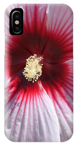 Callaway Gardens Hibiscus IPhone Case