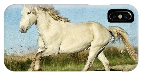 Camargue Stallion IPhone Case
