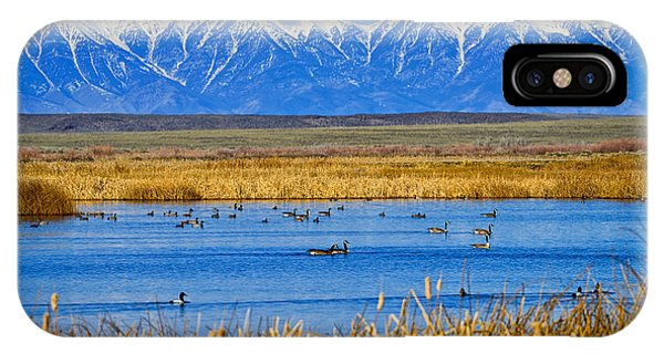Camas National Wildlife Refuge IPhone Case
