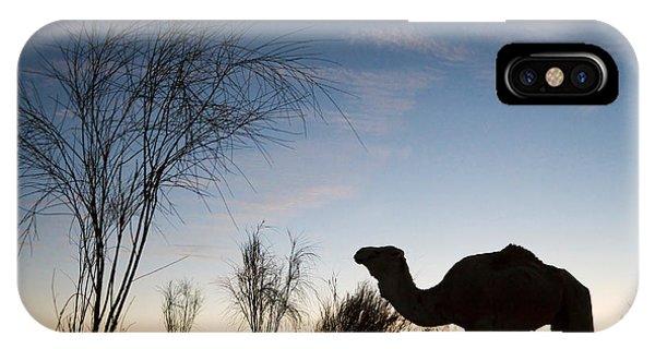 Caravan iPhone Case - Camel Sunset by Delphimages Photo Creations