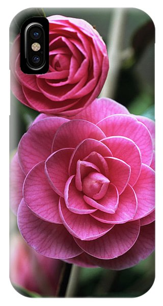 Camellia Flowers Phone Case by Adrian Thomas/science Photo Library