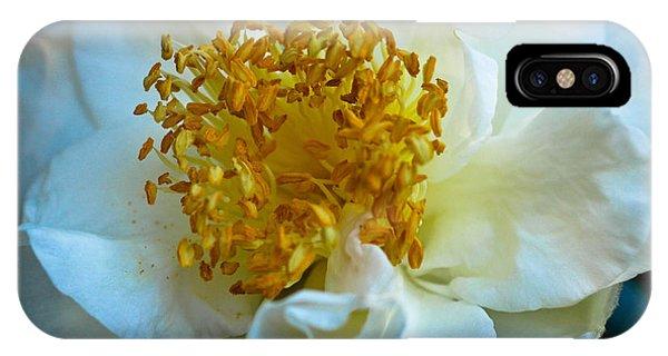 Camellia IPhone Case