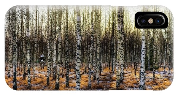 Birch Tree iPhone Case - Camouflages by Kent Olsson