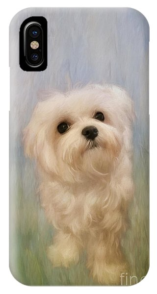 Pup iPhone Case - Can We Play Now by Lois Bryan
