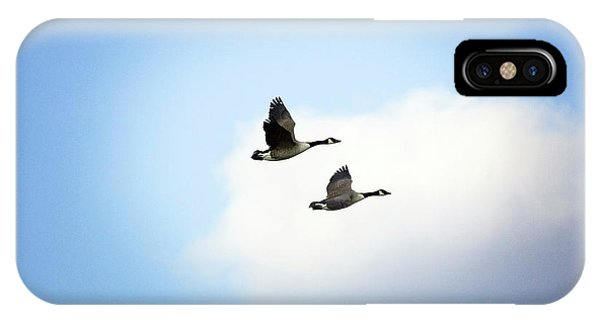 Canada Goose iPhone Case - Canada Geese In Flight by John Devries/science Photo Library