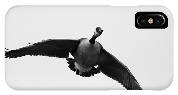 Canada Goose In Black And White Phone Case by Brian Magnier