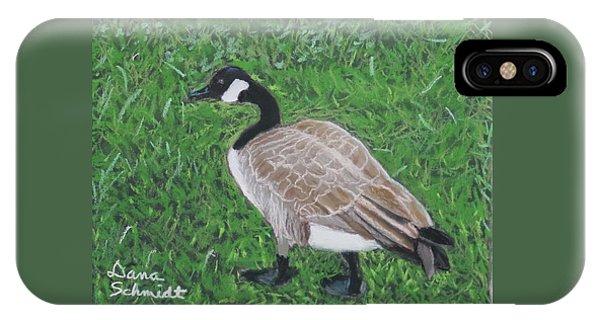 Canada Goose In Golden Gate Arboretum IPhone Case
