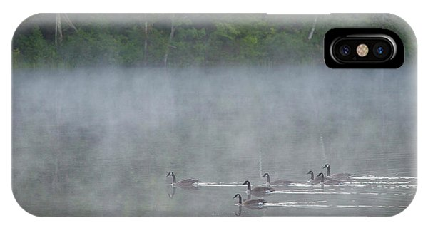 Canada Goose iPhone Case - Canada, Quebec Canada Geese In Fog by Jaynes Gallery