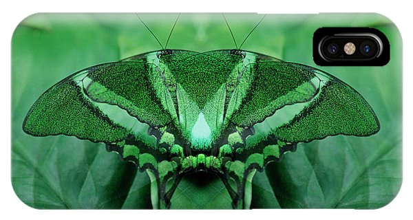 Victoria Butterfly Gardens iPhone Cases | Fine Art America