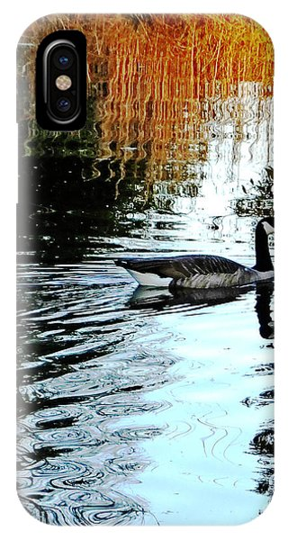 Canadian Goose At Burden  IPhone Case