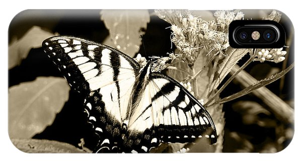 Canadian Tiger Swallowtail In Sepia IPhone Case