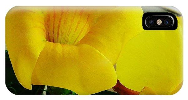 Canario Flower IPhone Case