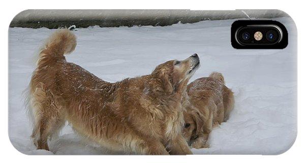 Canine Friends IPhone Case