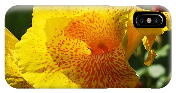 Canna Beauty IPhone Case