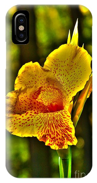 Canna Wow IPhone Case