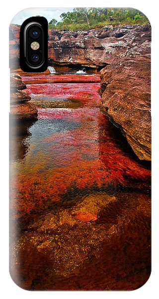 Colombia iPhone Case - Cano Cristales by Jess Kraft