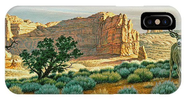 Buck iPhone Case - Canyon Country Buck by Paul Krapf